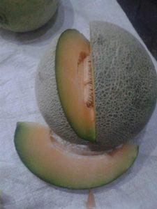 Matangnya Buah Melon Karena Hormon Gas Etilen