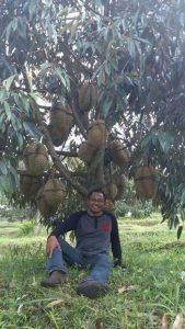 Dr. LUTHFI BANSIR Pakar Durian dan Pemuliaan Tanaman